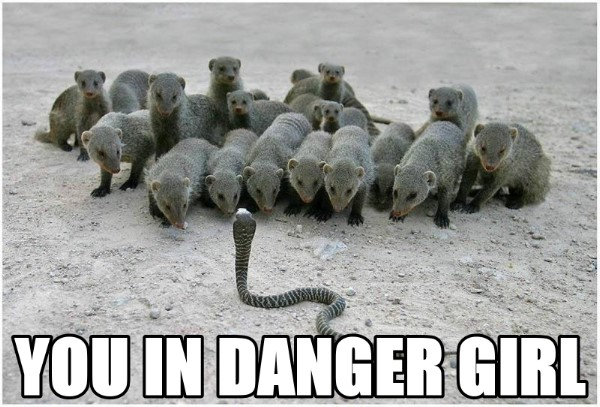 You In Danger Girl